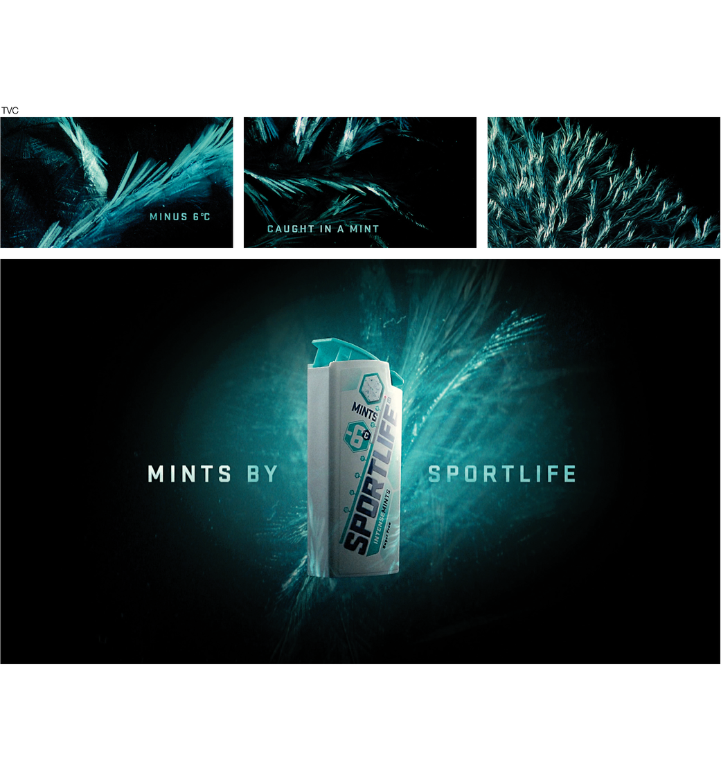 Sportlife - Degrees caught in a mint