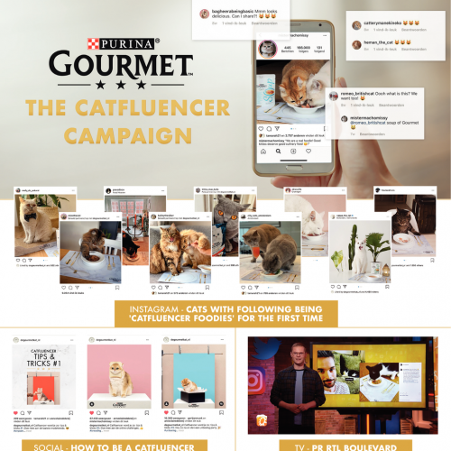 Feline Foodie: The Catfluencers Campaign